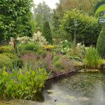 Onderhoud Bloemen tuin